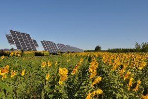 Solar EPC Service in Gujarat