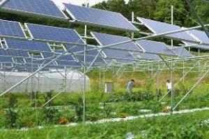 Solar Power Plant Supplier