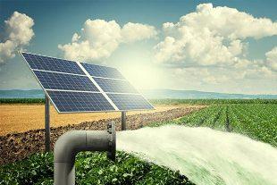 Solar Pump Manufacturer
